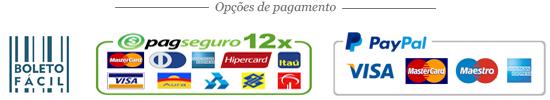 Aceitamos pagamentos via PagSeguro (cartões de crédito), PayPal (cartões de crédito) e Boleto Bancário.